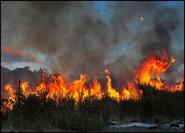 Richmond Beach fire 5
