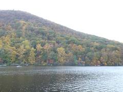 日, 2012-10-21 16:39 - 紅葉