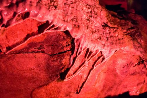 Howe Caverns - Howes Cave, NY - 2012, Apr - 12.jpg | by sebastien.barre