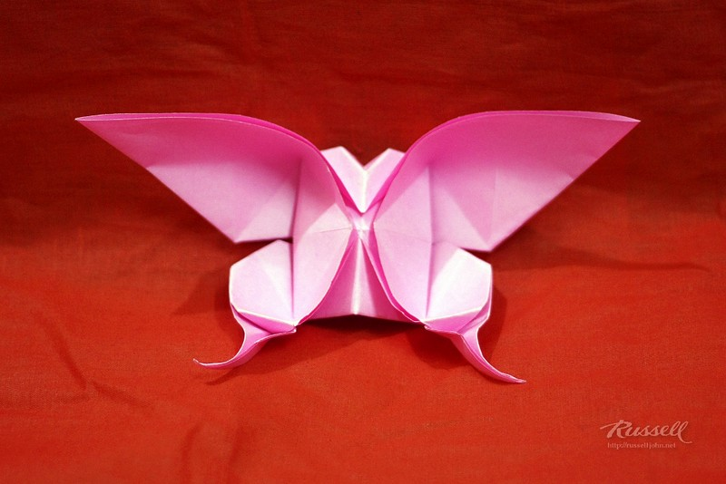 Origami Swallowtail Butterfly