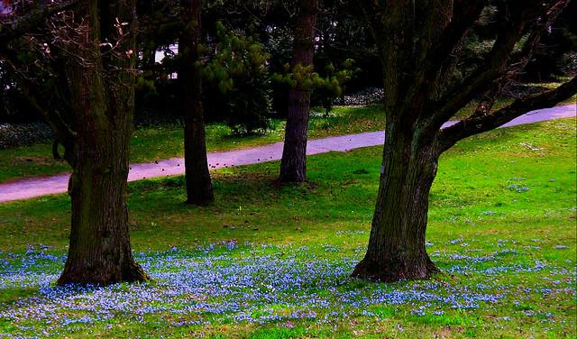 Stgt.-Killesberg , romantic path , 40-54/1145