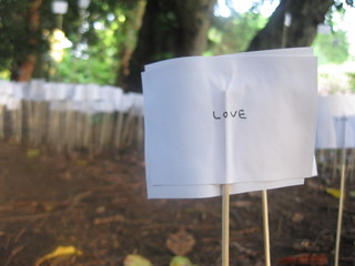 """The """"Love"""" Project; Day 2"""