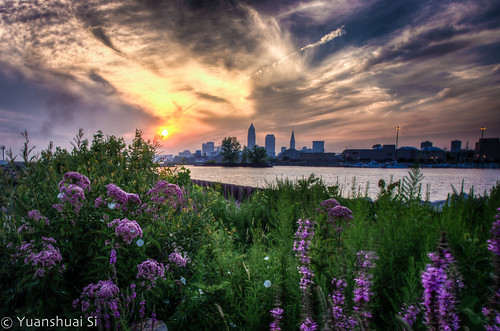 city flowers buildings lakeerie cleveland towers greatlakes wildflowers towercity hdr k5 cityofcleveland wideanglelens downtowncleveland keytower forestcity clevelandskyline purplecolor uscity huntingtontower pentaxart clevelandsunrise pentaxk5 yuanshuaisi boatsdeck dashuaiphotography smcda15mmf4limit morningcleveland northeastofohio cityofohiostate 克利夫兰,美国城市,宾得,野花,伊利湖,五大湖,森林之城,野花,edgewaterpark 城市,日出,清晨,湖边,大帅摄影,司远帅