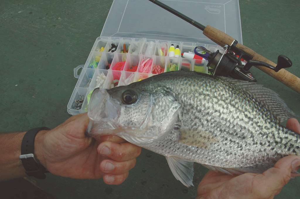 Best Crappie Jigs On Planet Earth - A Top 10 list review of the very best jigs for crappie fishing.
