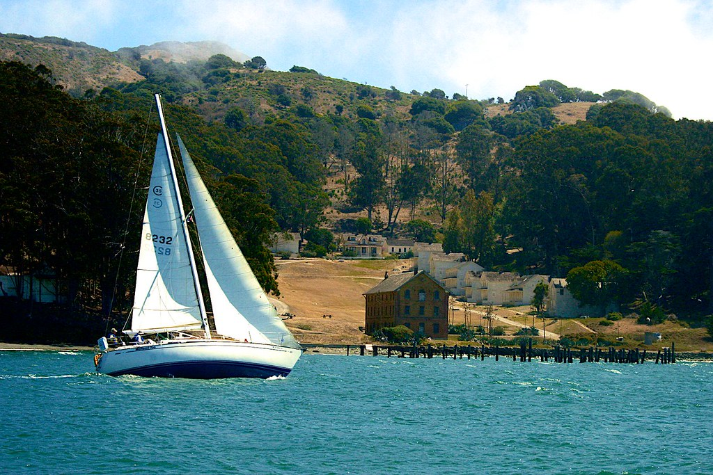 Image result for sf bay sail