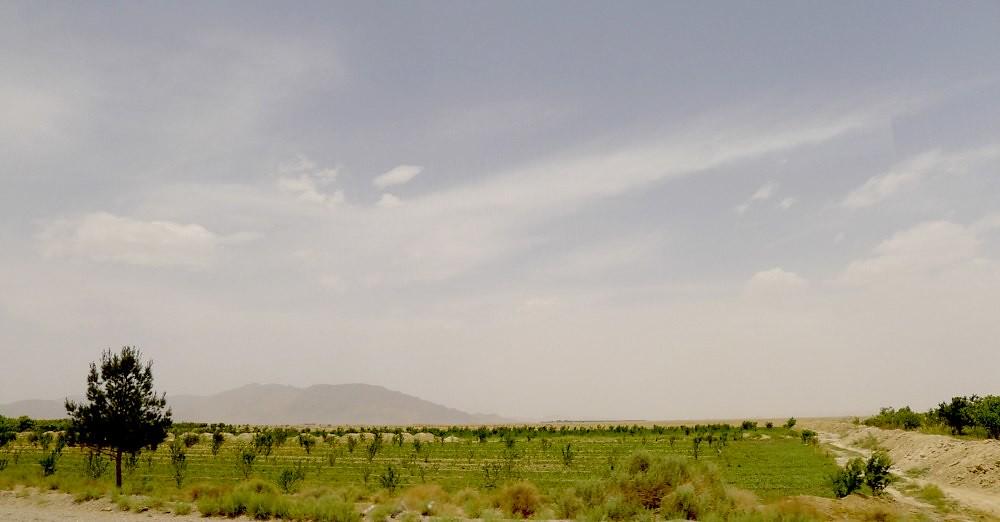 yazd-shiraz-L1020986