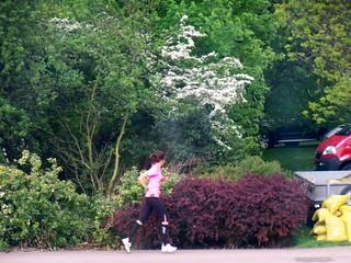 Dartford Runner