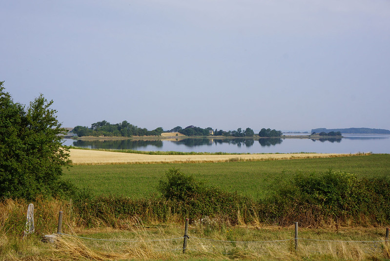 Kaedeby-Haver-2014-07-27 (7)
