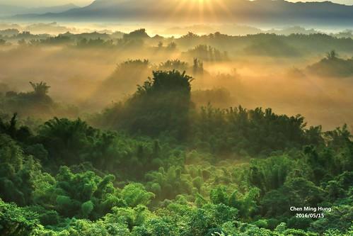 nature sunrise 二寮 erliao