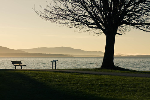 ocean trees winter light sunset vacation sky nature water colors grass silhouette fog clouds canon bench landscape island photography 50mm islands washington scenery pacific northwest path walk branches scene story pacificnorthwest bellingham layers washingtonstate setting pnw telling 2012 jeanamariephotography
