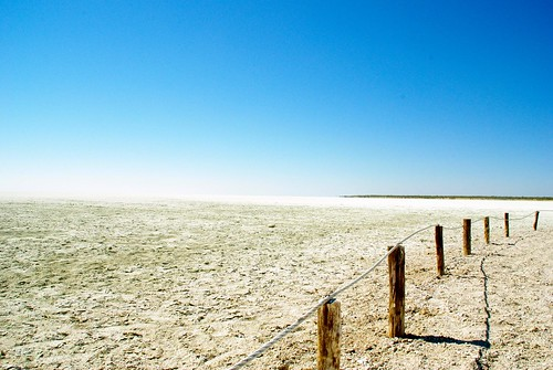 Etosha National Park | by traveling9to5