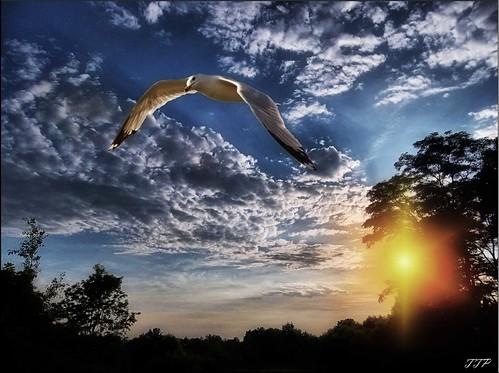 sunset sky clouds canon kodak