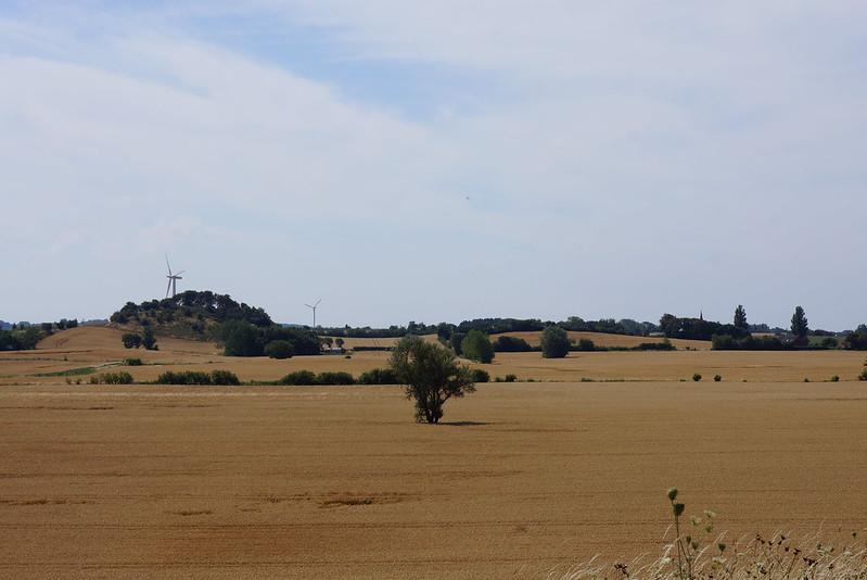 Kaedeby-Haver-2014-07-24 (34)
