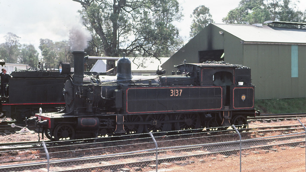 NSWGR_BOX006S09 - 3137 at NSWRTM, Thirlmere by michaelgreenhill