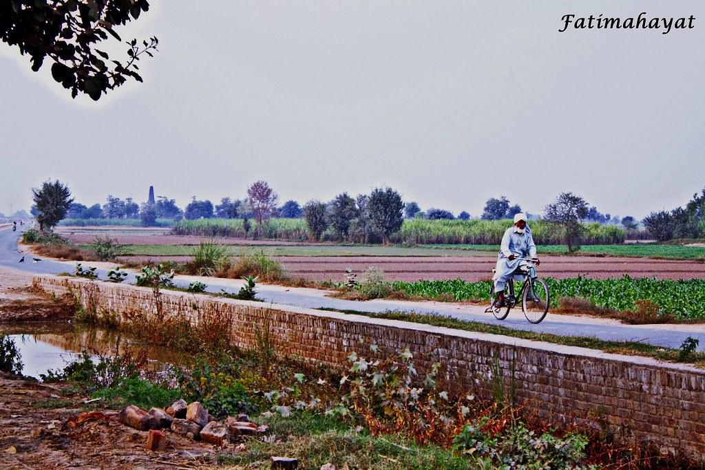 Sada Apna Punjab | Local Desi Pohto :) | Abubaker Javed | Flickr