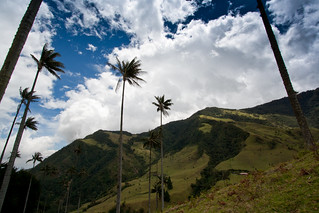 Cocora Valley   by The Colombian Way