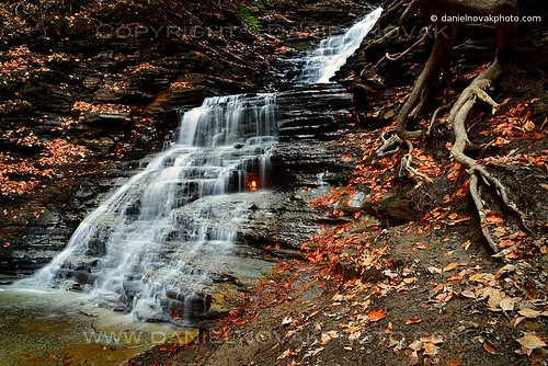 morning autumn ny newyork fall nature water colors horizontal contrast forest landscape outdoors fire waterfall buffalo woods natural cloudy hike niagara falls trail flame elements root combination eternalflame orchardpark eternalflamefalls