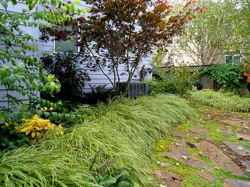 Garden Journal-Grass Edging | by jacki-dee