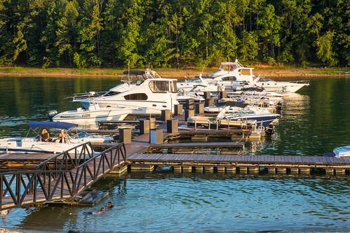 trees people water georgia boat dock unitedstates buford lakelanier lakelanierislands sunsetcove
