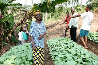 Growing as a community in rural DR Congo | by DFID - UK Department for International Development