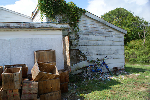 Bicycle and crab boxes, St. Mary's County