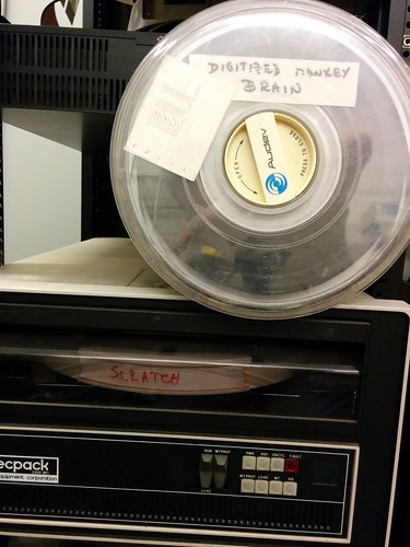 Digitized Monkey Brain and Scratch Disk   by hudson