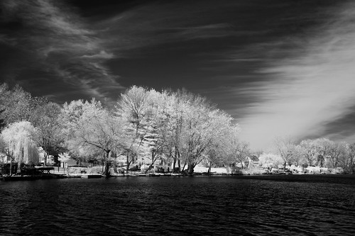 trees blackandwhite lake clouds surreal infrared cloudsstormssunsetssunrises