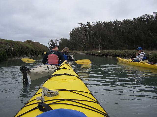 Kayaking on Elkhorn Slough