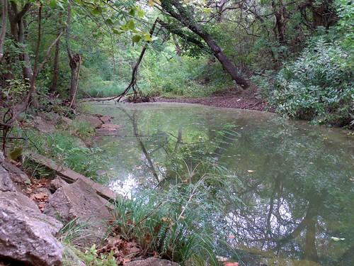 creek reflecting branch ge triangular