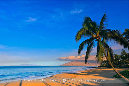 ocean park morning trees sky usa tree tourism beach water america sunrise canon landscape hawaii sand mood colours view pacific atmosphere maui romance palm palmtrees colourful viewpoint meijer henk kihei kamaole warmcolors floydian kamaolebeachpark proframe proframephotography canoneos1dsmarkiii henkmeijer