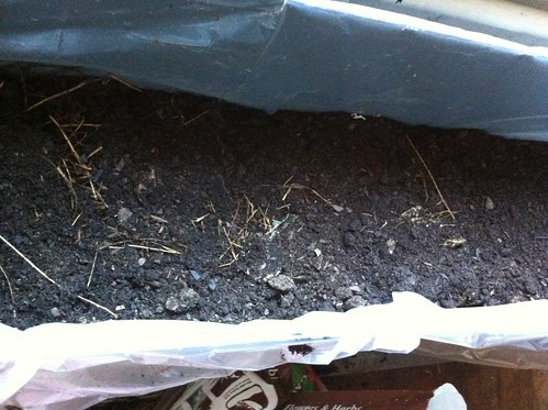 Bucket #2 Bokashi Compost Covered