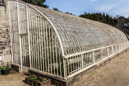 Botanic Gardens In Glasnevin (Dublin) | by infomatique