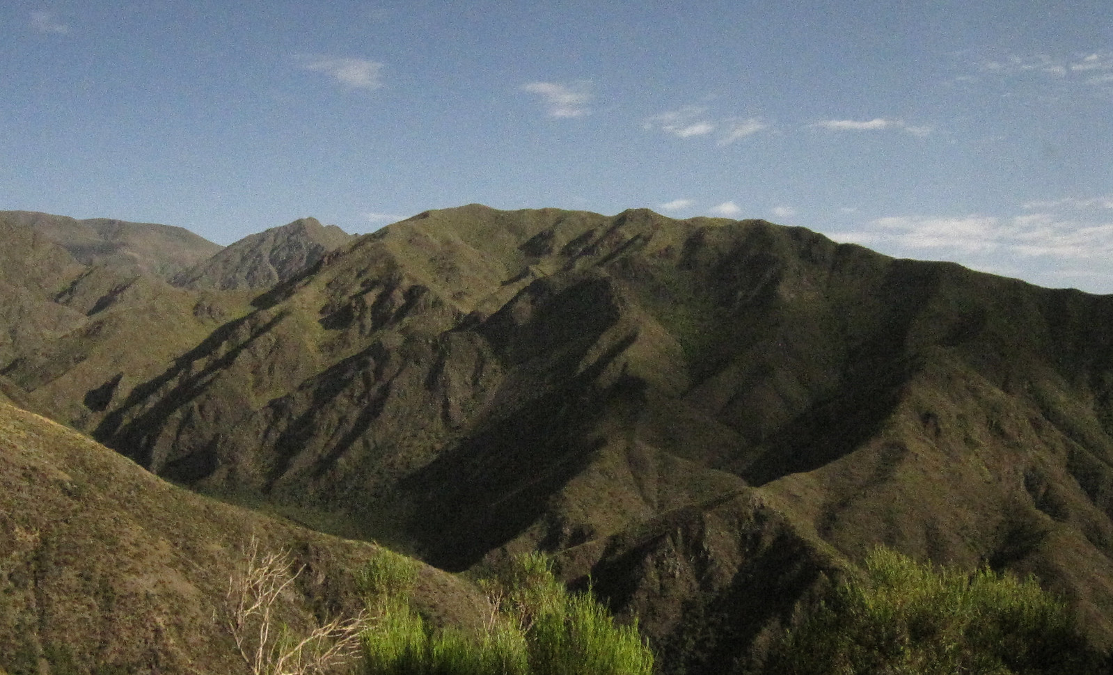 Mendoza 264