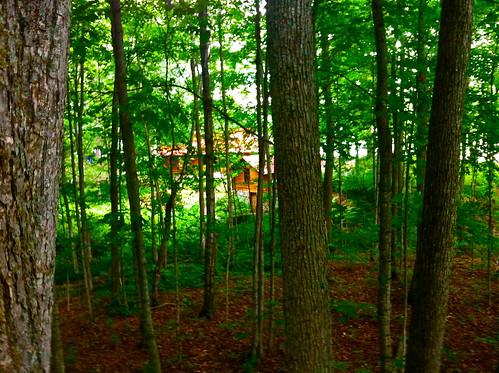 cabin northernmichigan laketecon