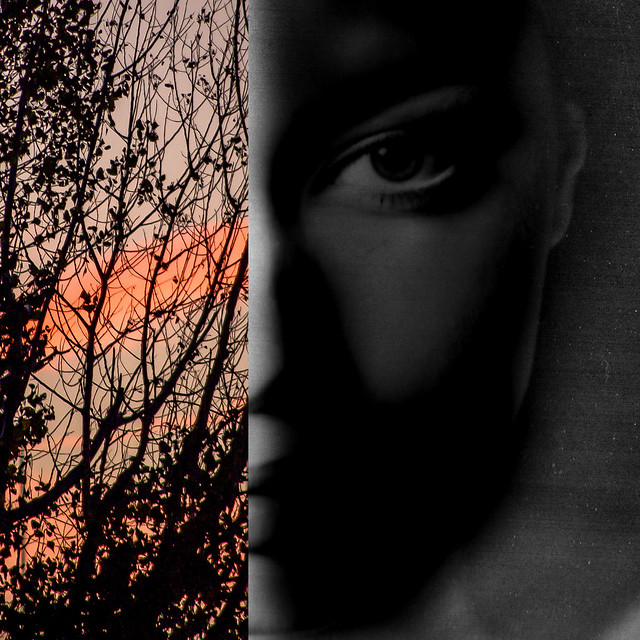 l'oeil de l'aube