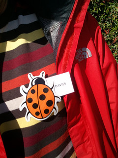 An ftt ladybirds wonders whose badge this is.