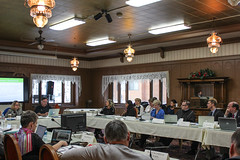 SDWG Chena 2015 - Meeting Table 2