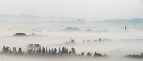 trees mist misty landscape countryside soft sony fade pylons atmospheric southoxfordshire a99 sonyalpha andyhough slta99v andyhoughphotography tamronsp70200di