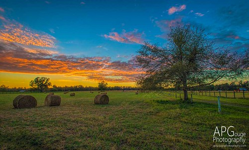 sunset detail fall photoshop nikon south southcarolina clarity adobe carolina hay bales aiken topaz d600 adobelightroom topazlabs aikencounty nikond600 topazdetail topazclarity phototshopcc