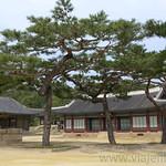 17 Corea del Sur, Changgyeonggung Palace  10