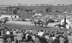 Adelaide Road Racecourse
