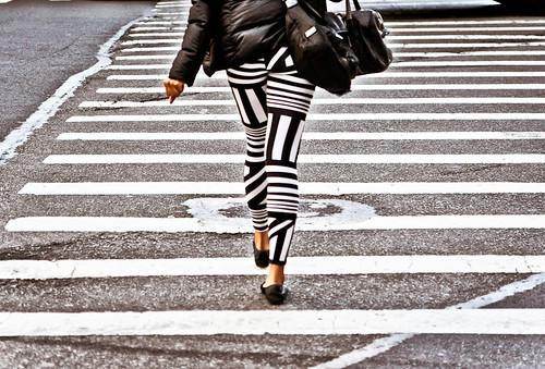Zebra Cross | by John Fraissinet