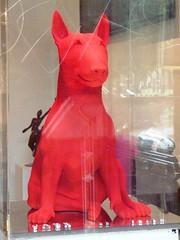 Paris - red dog in Le Marais gallery