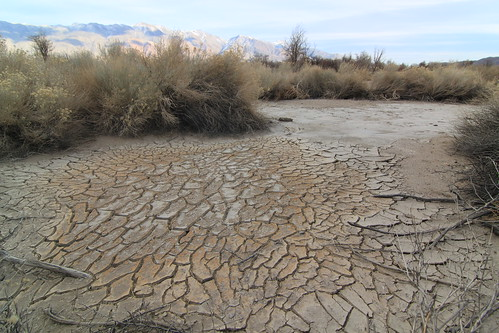 Dried-up stream   Manzanar   Snowbird1972   Flickr