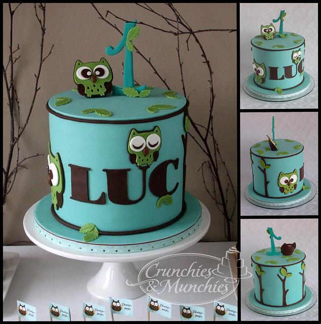 Owl cake Luc 1st birthday