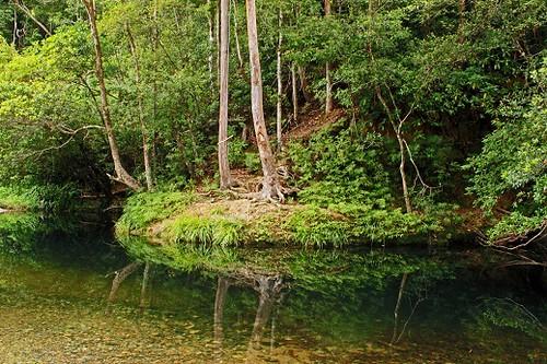 park national bindarri