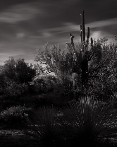 arizona sonora sunrise desert infrared scottsdale tontonationalforest