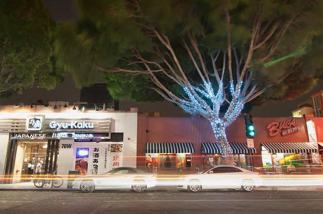 Pasadena Google+ Photowalk