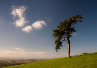 Raddon Hill, near Thorverton, Exeter   by chris-parker