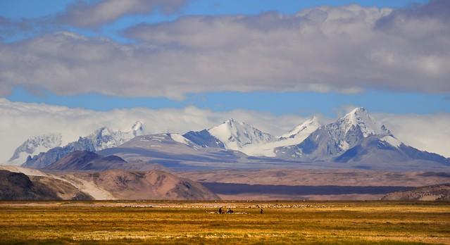 Herdsmen with flocks of sheep in the Himalayan Mountain Range, Tibet